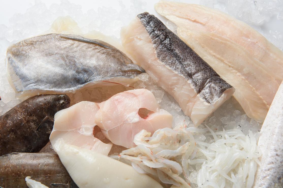 MARODI pescado blanco y pescado azul